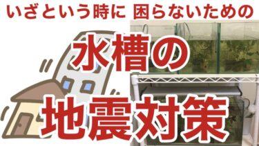 小型水槽の地震対策 〜倒れない&こぼれないための工夫(水槽台・マット・コンセント)〜